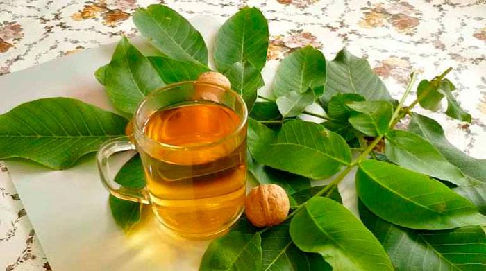 Отвар на основе листьев грецкого ореха