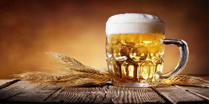 пиво и организм