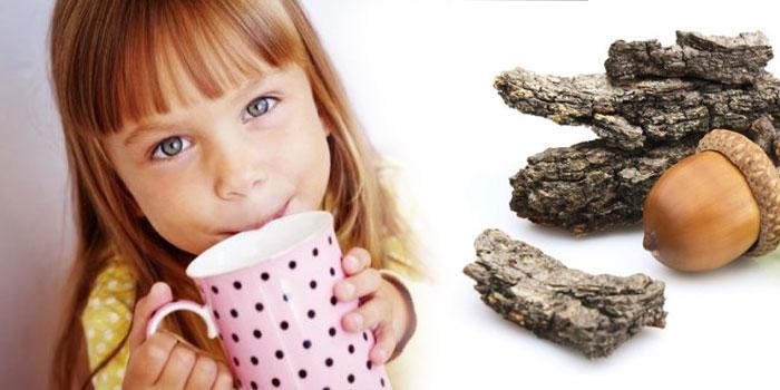кора дуба для детей